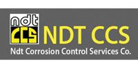 NDT CCS